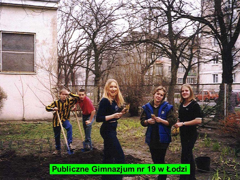 Publiczne Gimnazjum nr 19 w Łodzi