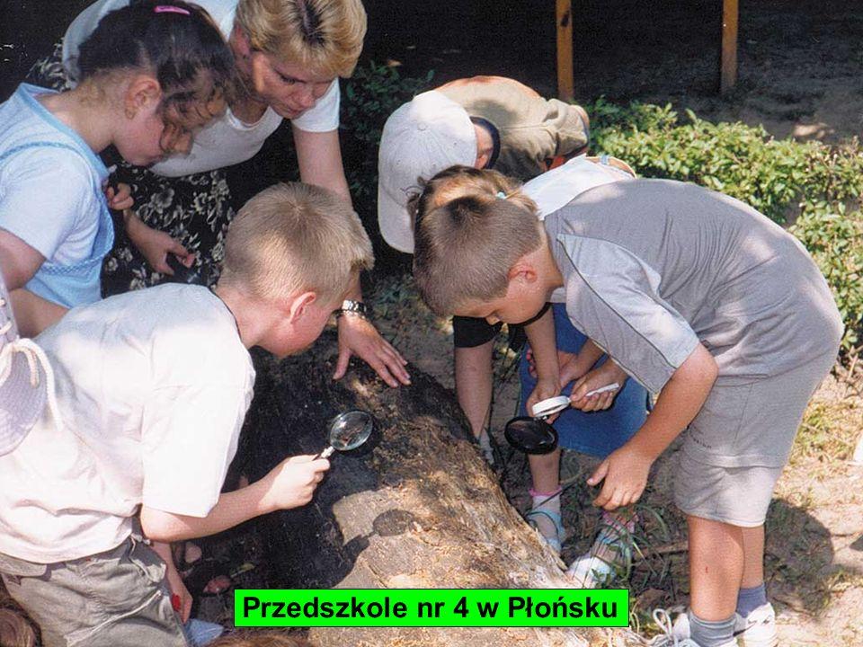 Przedszkole nr 4 w Płońsku