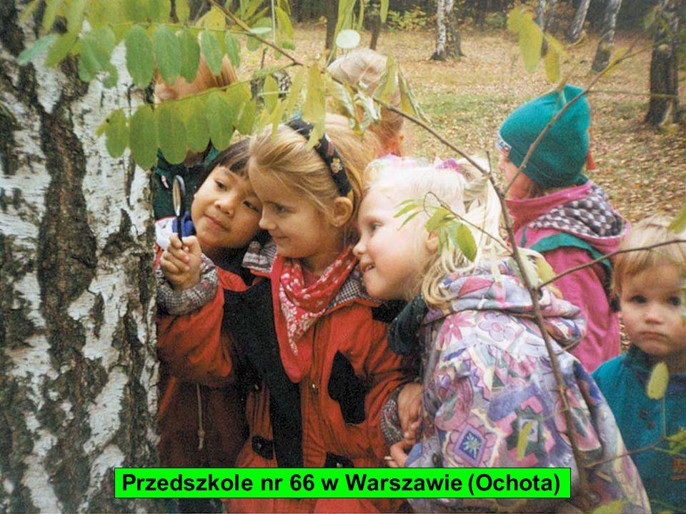 Przedszkole nr 66 w Warszawie (Ochota)