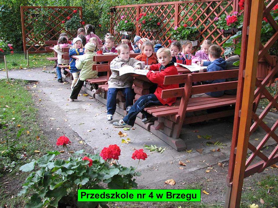 - wyróżnione placówki Przedszkole nr 4 w Brzegu