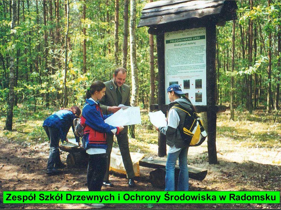 Zespół Szkół Drzewnych i Ochrony Środowiska w Radomsku