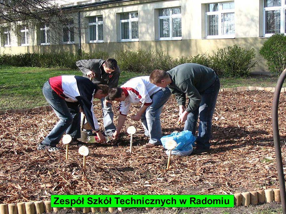 Zespół Szkół Technicznych w Radomiu