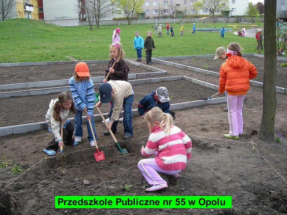Przedszkole Publiczne nr 55 w Opolu