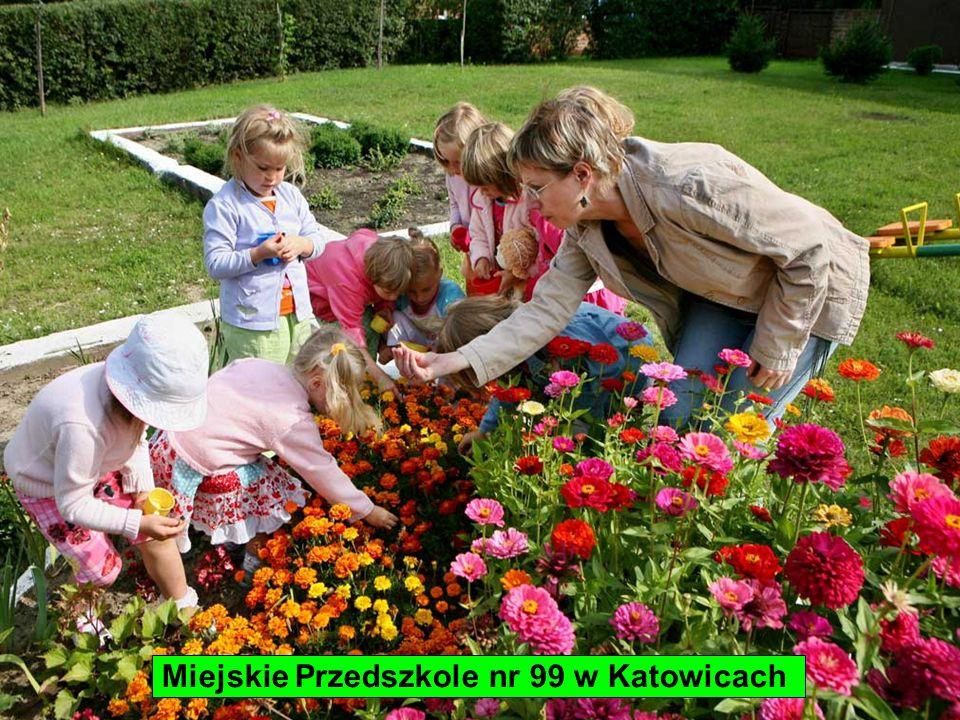 Miejskie Przedszkole nr 99 w Katowicach