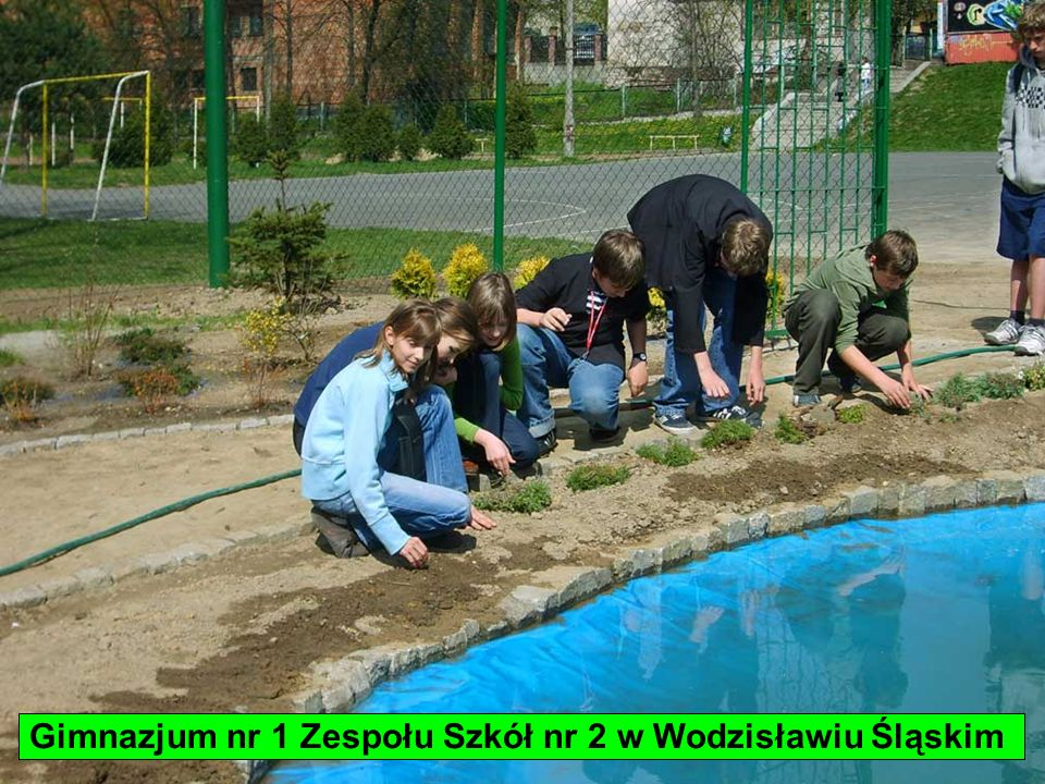Gimnazjum nr 1 Zespołu Szkół nr 2 w Wodzisławiu Śląskim
