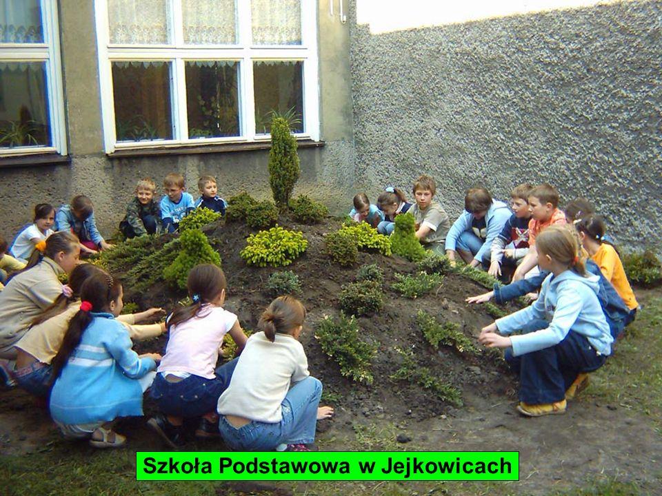 Zespół Szkół Ogólnokształcących nr 1 w Sędziejowicach