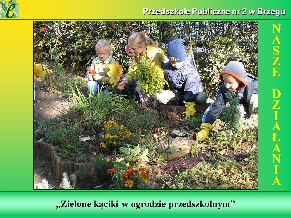 Wybrane działania w ramach zdobywania Zielonego Certyfikatu Zielone kąciki w ogrodzie przedszkolnym NASZE DZIAŁANIANASZE DZIAŁANIA Przedszkole Publiczne nr 2 w Brzegu