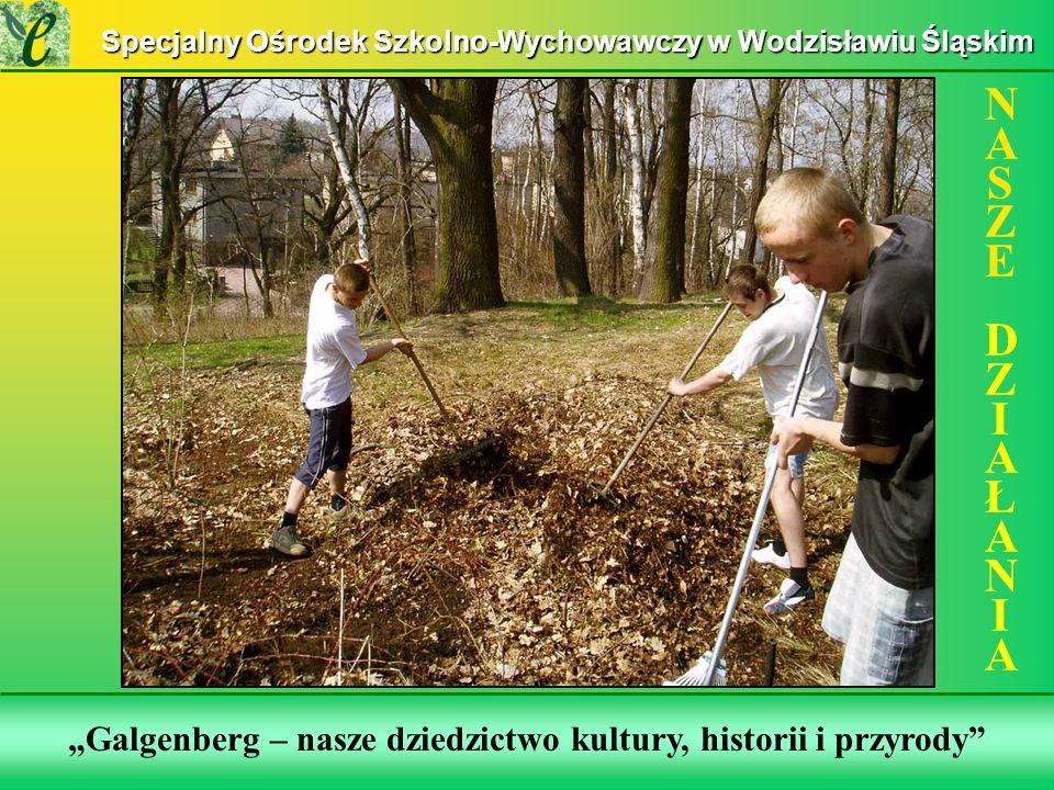 Wybrane działania w ramach zdobywania Zielonego Certyfikatu Galgenberg – nasze dziedzictwo kultury, historii i przyrody NASZE DZIAŁANIANASZE DZIAŁANIA Specjalny Ośrodek Szkolno-Wychowawczy w Wodzisławiu Śląskim