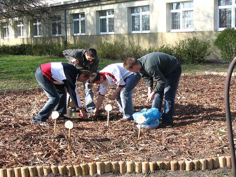 ZIELONY CERTYFIKAT Zgłoszenia przyjmujemy pod adresem: Fundacja Ośrodka Edukacji Ekologicznej ul.