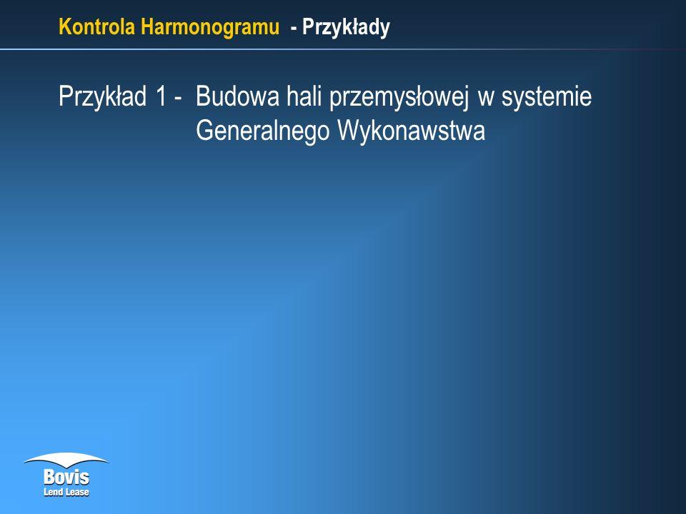 Kontrola Harmonogramu - Przykłady Przykład 1 - Budowa hali przemysłowej w systemie Generalnego Wykonawstwa