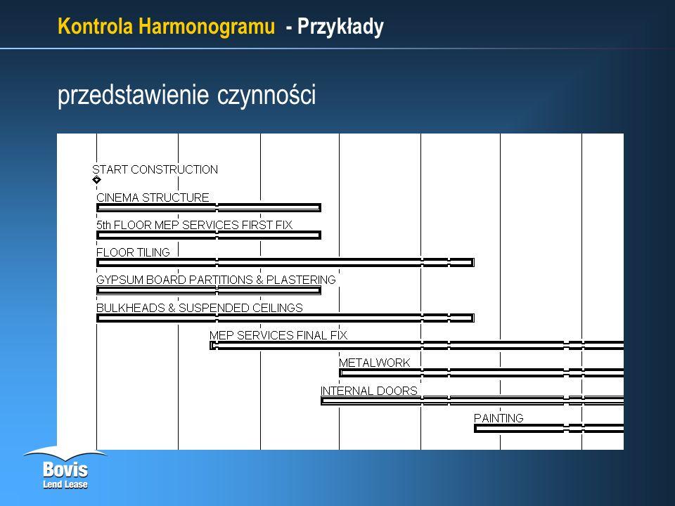 Kontrola Harmonogramu - Przykłady przedstawienie czynności