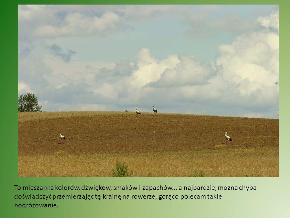 Suwalszczyzna to kraina, kusząca swoją przyrodą, ukazuje na każdym dosłownie kroku kalejdoskop swoich malowniczych krajobrazów...