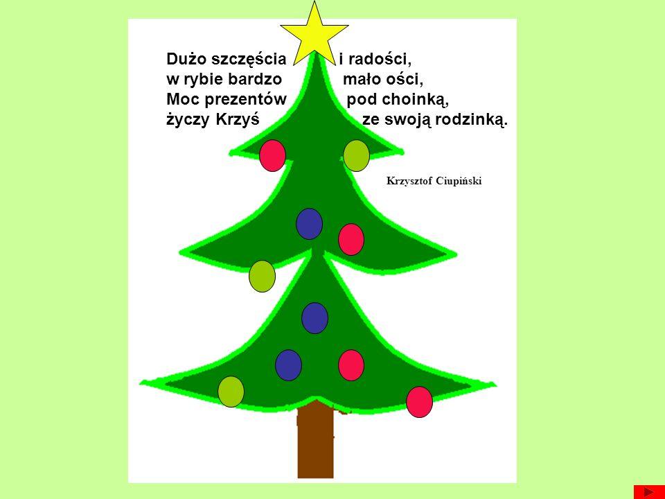 Wesołych Świąt Bożego Narodzenia, zdrowia, szczęścia i miłości w gronie rodziny i przyjaciół.