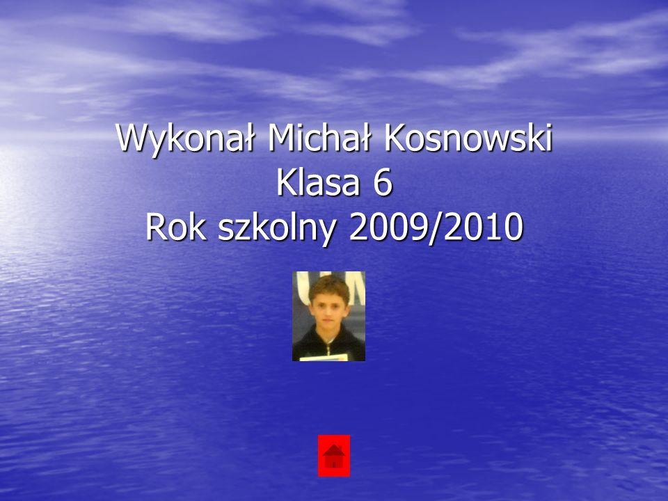 Wykonał Michał Kosnowski Klasa 6 Rok szkolny 2009/2010