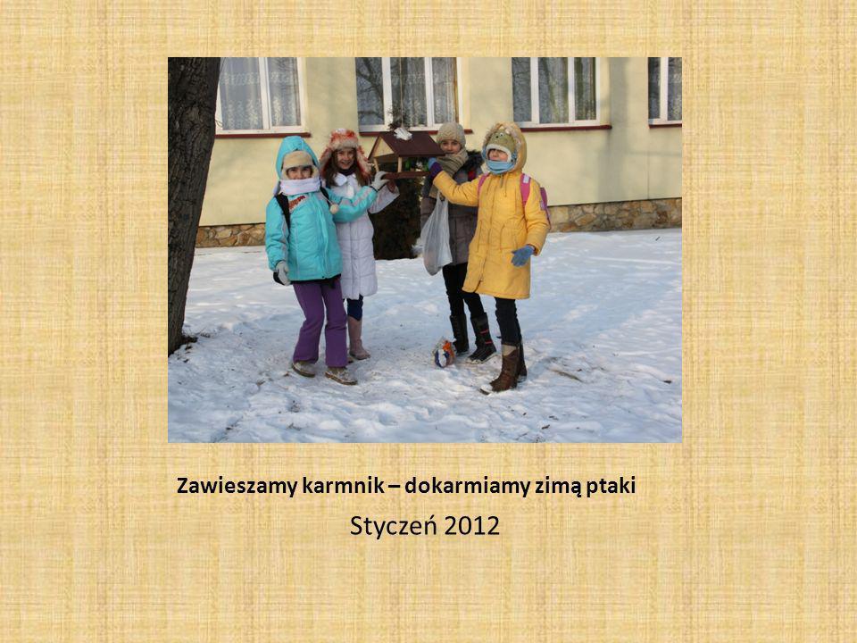 Zawieszamy karmnik – dokarmiamy zimą ptaki Styczeń 2012