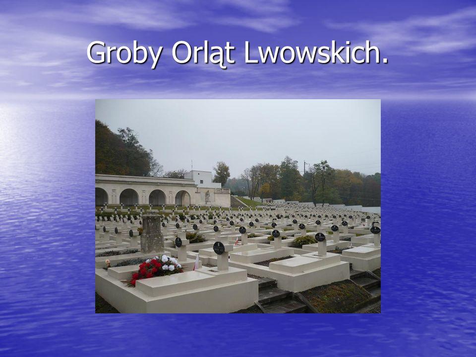 Groby Orląt Lwowskich.