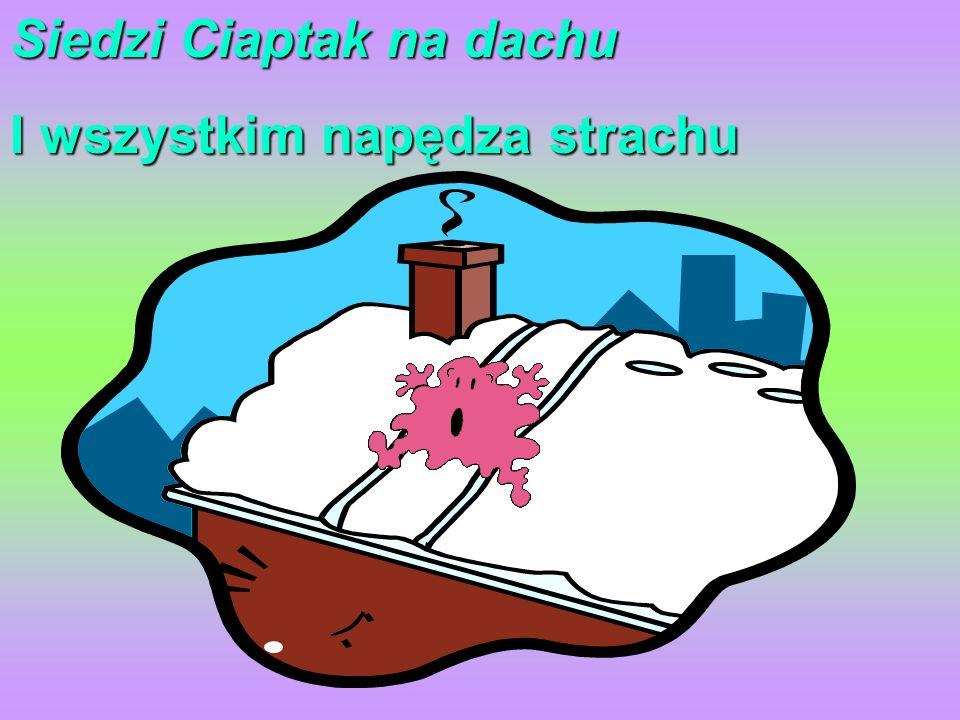 Siedzi Ciaptak na dachu I wszystkim napędza strachu