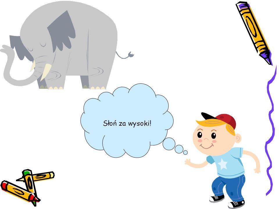 Słoń za wysoki!
