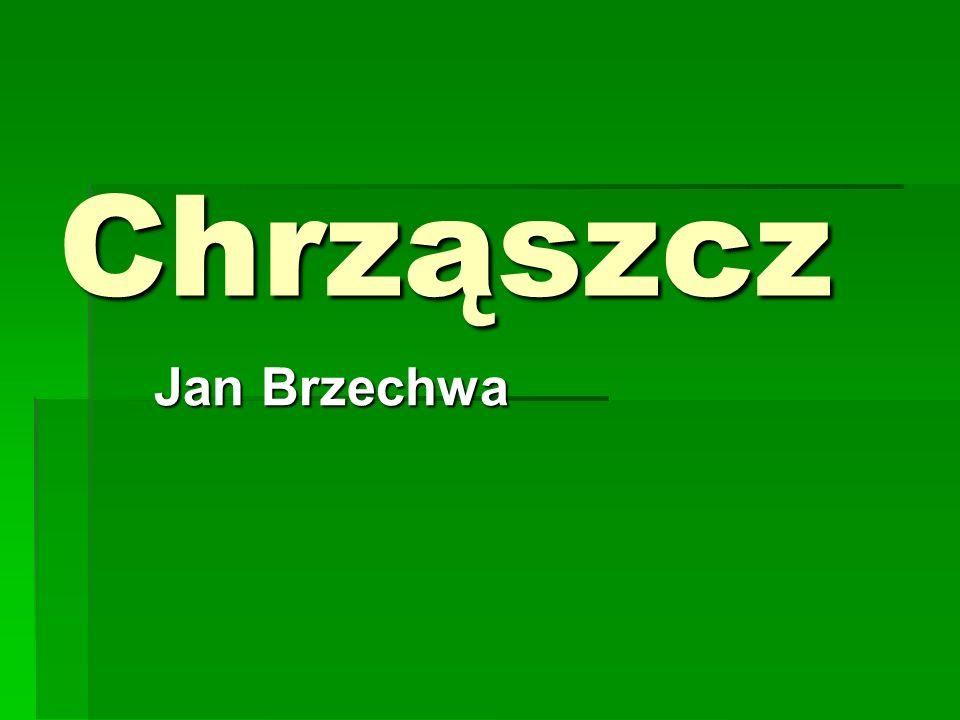 W Szczebrzeszynie chrząszcz brzmi w trzcinie I Szczebrzeszyn z tego słynie.