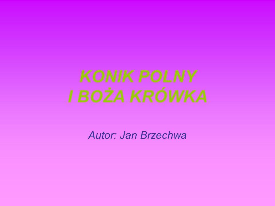 KONIK POLNY I BOŻA KRÓWKA Autor: Jan Brzechwa