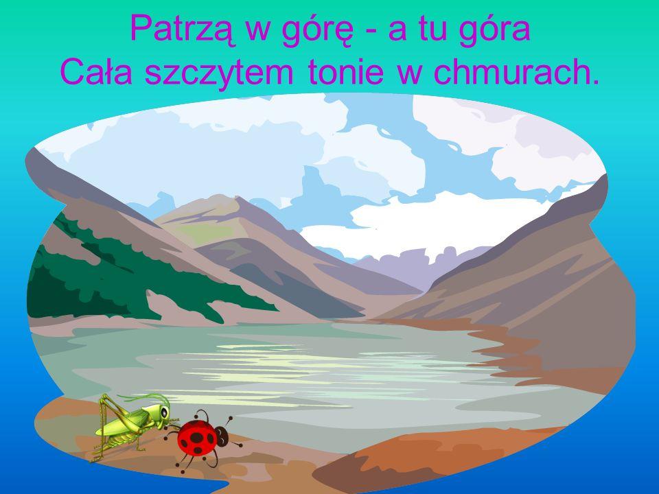 Konik polny rzekł, pobladłszy: Boża krówka aż struchlała: Popatrz, góra jak się patrzy! Idzie na nas góra cała!