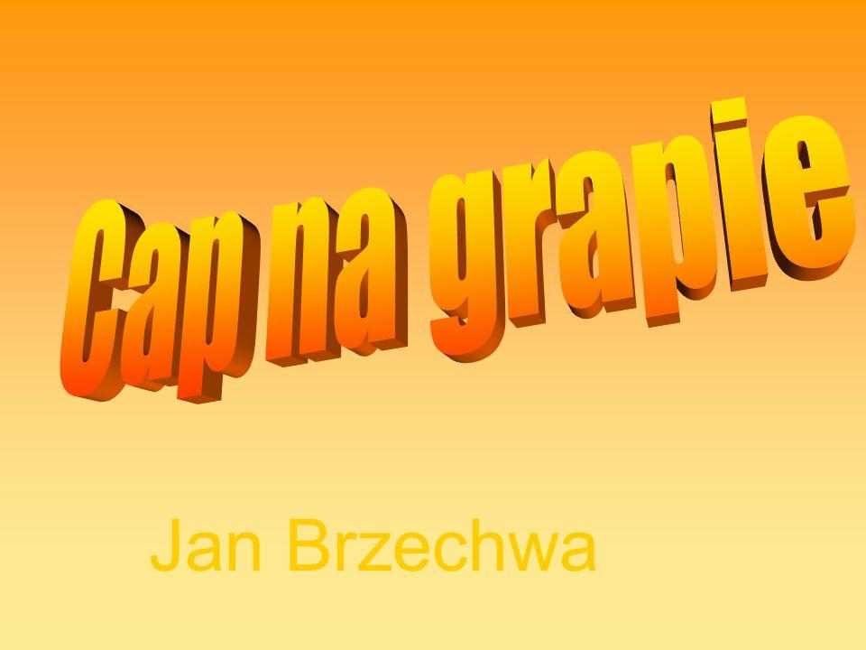 Jan Brzechwa