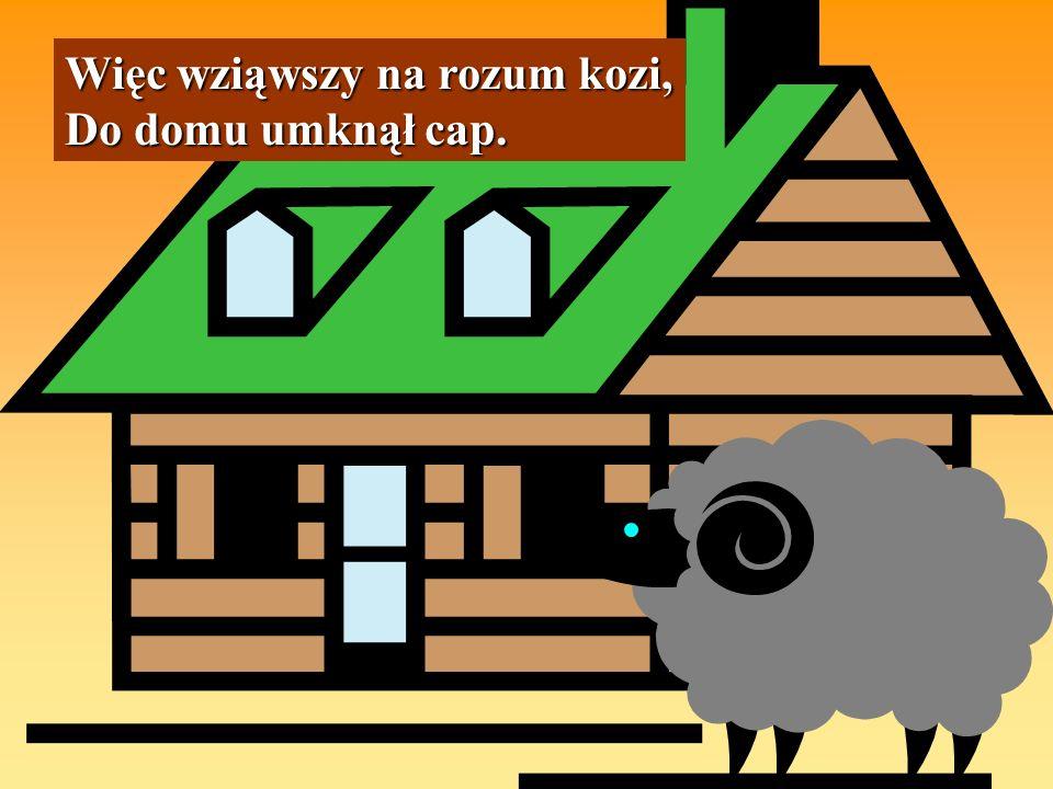 Więc wziąwszy na rozum kozi, Do domu umknął cap.
