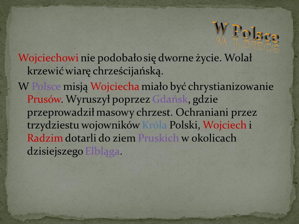 Wojciechowi nie podobało się dworne życie. Wolał krzewić wiarę chrześcijańską. W Polsce misją Wojciecha miało być chrystianizowanie Prusów. Wyruszył p