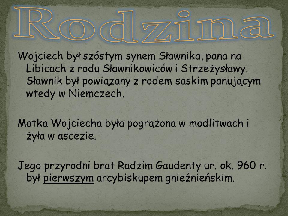 Wojciech był szóstym synem Sławnika, pana na Libicach z rodu Sławnikowiców i Strzeżysławy. Sławnik był powiązany z rodem saskim panującym wtedy w Niem