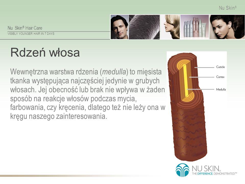Nu Skin ® Hair Care VISIBLY YOUNGER HAIR IN 7 DAYS Nu Skin ® Warstwa korowa włosa Rdzeń włosa jest otoczony warstwą korową, która decyduje o elastyczności i stopniu skręcenia włosa.