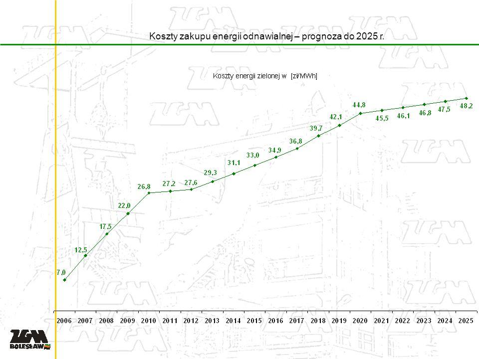 Koszty zakupu energii odnawialnej – prognoza do 2025 r.