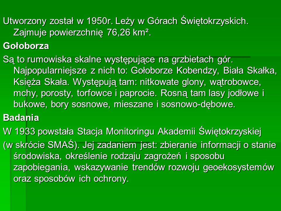 Utworzony został w 1950r. Leży w Górach Świętokrzyskich. Zajmuje powierzchnię 76,26 km². Gołoborza Są to rumowiska skalne występujące na grzbietach gó