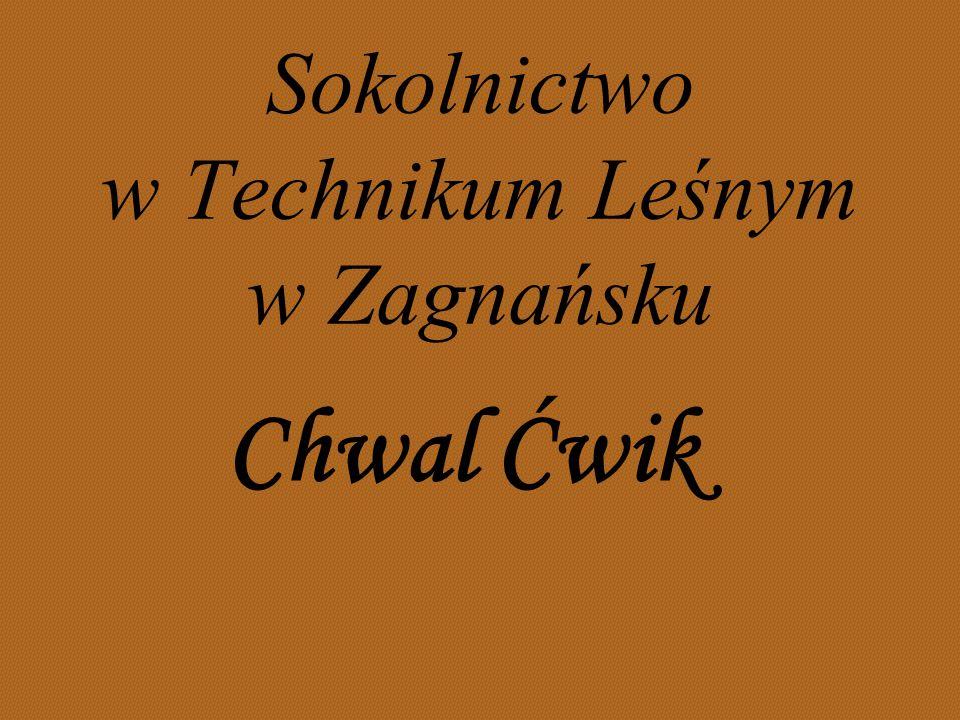 Sokolnictwo w Technikum Leśnym w Zagnańsku Chwal Ćwik