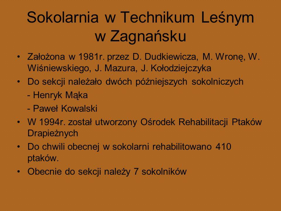Sokolarnia w Technikum Leśnym w Zagnańsku Założona w 1981r. przez D. Dudkiewicza, M. Wronę, W. Wiśniewskiego, J. Mazura, J. Kołodziejczyka Do sekcji n