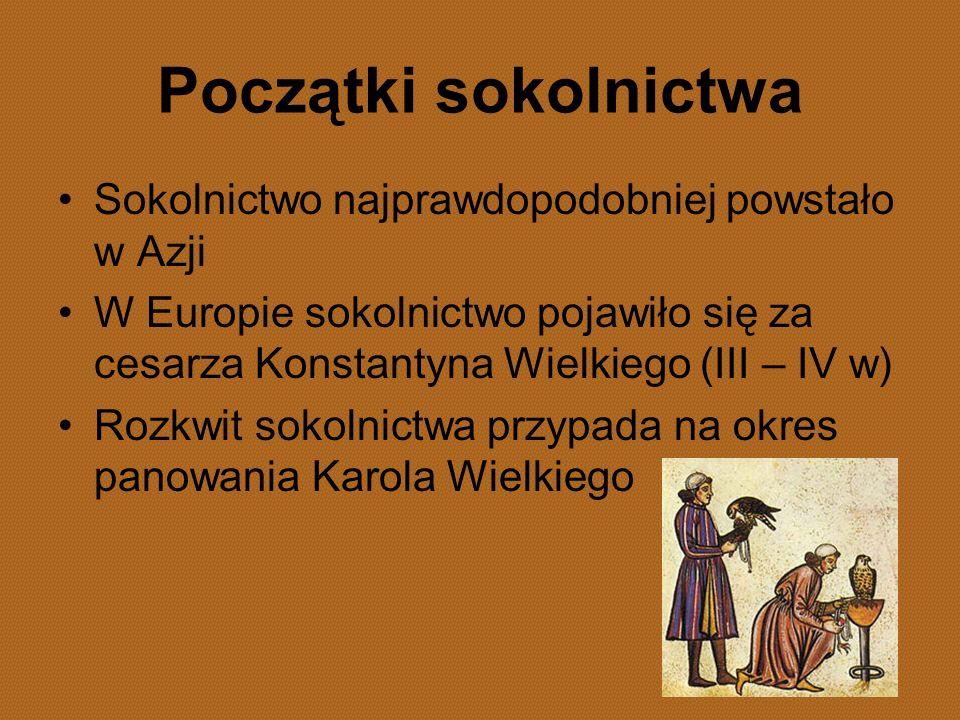 Początki sokolnictwa Sokolnictwo najprawdopodobniej powstało w Azji W Europie sokolnictwo pojawiło się za cesarza Konstantyna Wielkiego (III – IV w) R