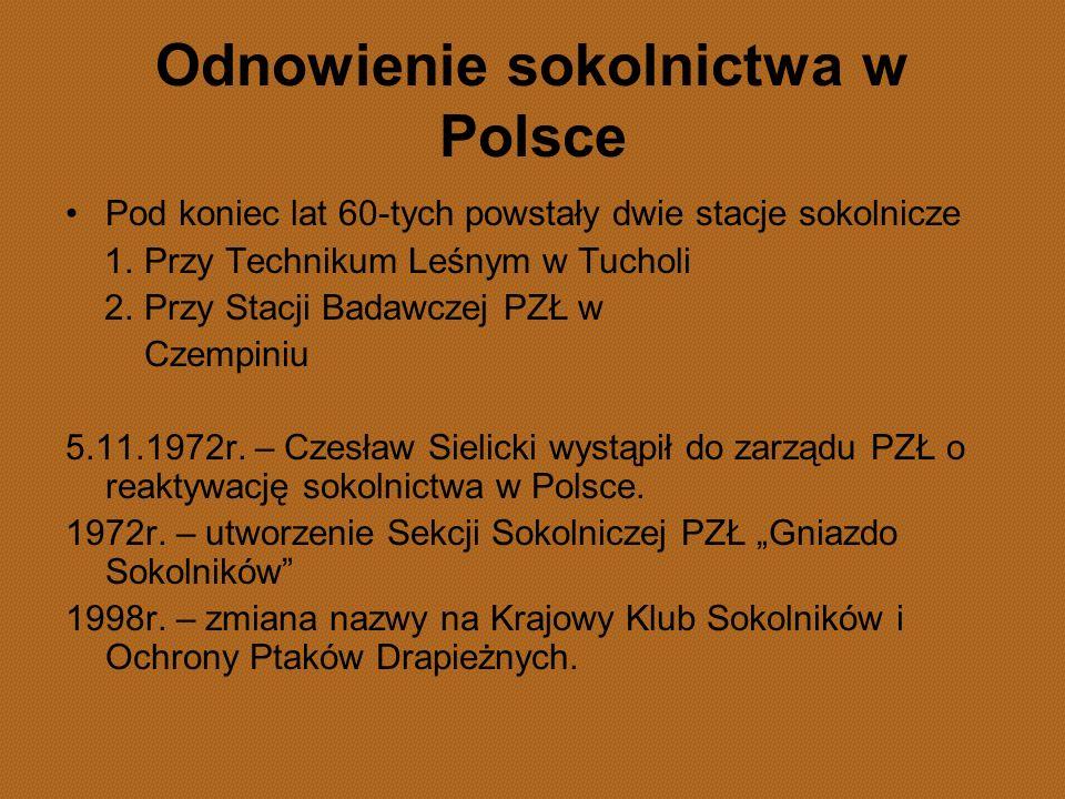 Odnowienie sokolnictwa w Polsce Pod koniec lat 60-tych powstały dwie stacje sokolnicze 1. Przy Technikum Leśnym w Tucholi 2. Przy Stacji Badawczej PZŁ