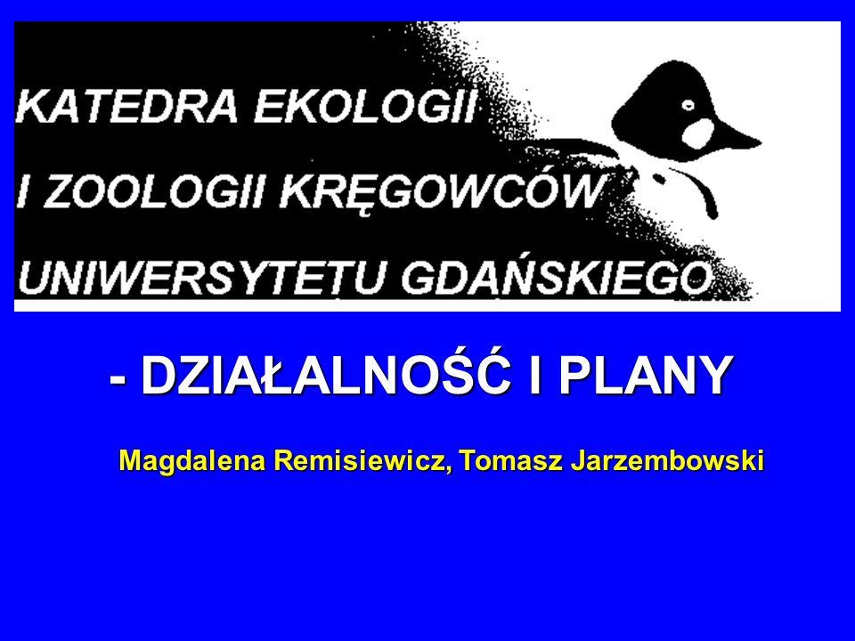- DZIAŁALNOŚĆ I PLANY Magdalena Remisiewicz, Tomasz Jarzembowski