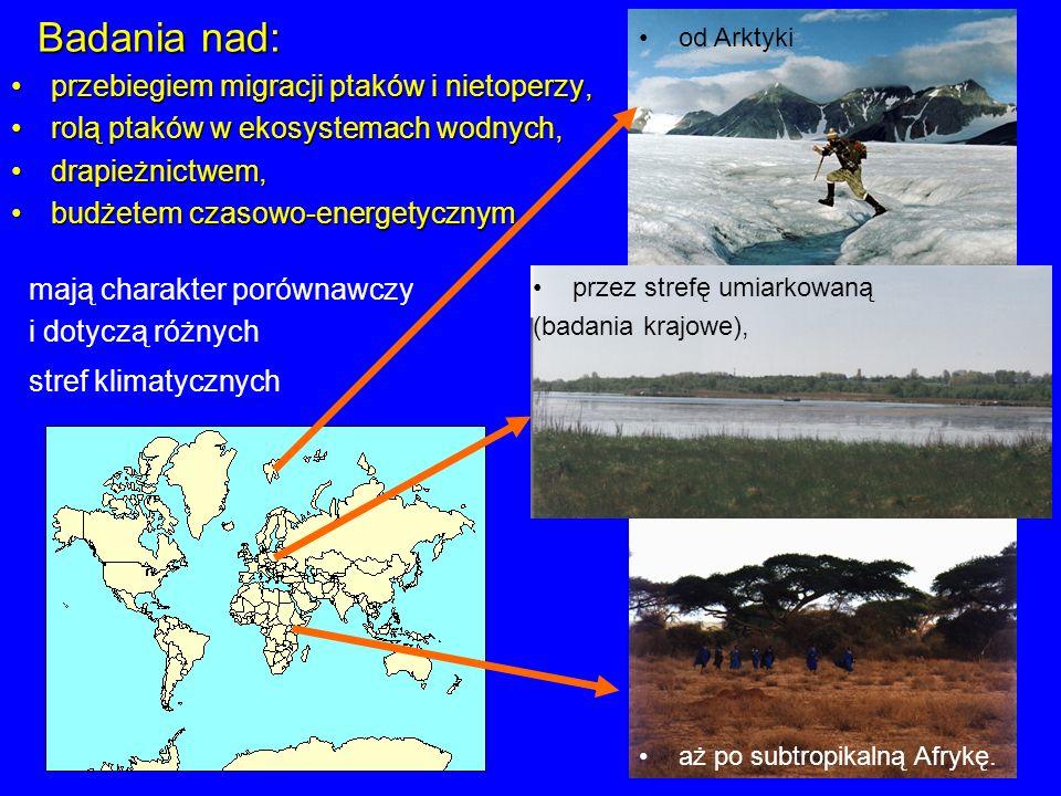 Badania nad: przebiegiem migracji ptaków i nietoperzy,przebiegiem migracji ptaków i nietoperzy, rolą ptaków w ekosystemach wodnych,rolą ptaków w ekosy