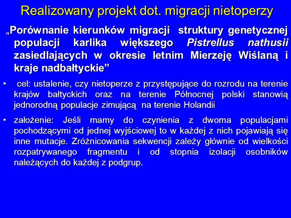 Realizowany projekt dot. migracji nietoperzy Porównanie kierunków migracji struktury genetycznej populacji karlika większego Pistrellus nathusii zasie
