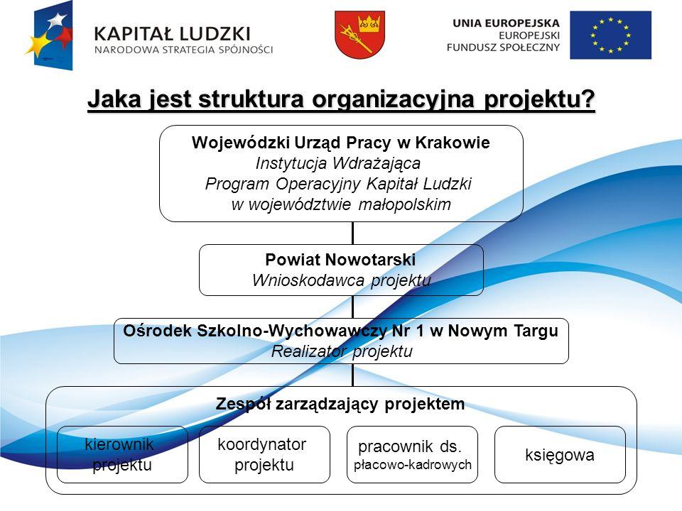 Jaka jest struktura organizacyjna projektu.