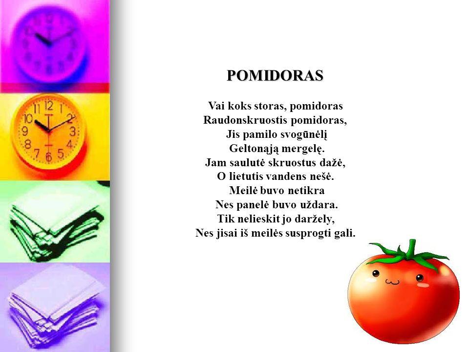 POMIDORAS POMIDORAS Vai koks storas, pomidoras Raudonskruostis pomidoras, Jis pamilo svogūnėlį Geltonąją mergelę.