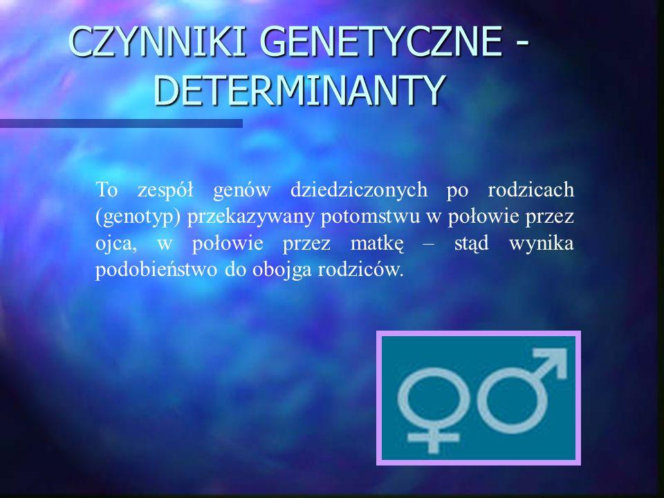 CZYNNIKI GENETYCZNE - DETERMINANTY To zespół genów dziedziczonych po rodzicach (genotyp) przekazywany potomstwu w połowie przez ojca, w połowie przez