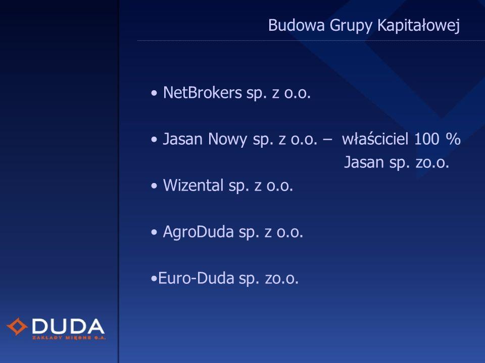 Budowa Grupy Kapitałowej NetBrokers sp. z o.o. Jasan Nowy sp.