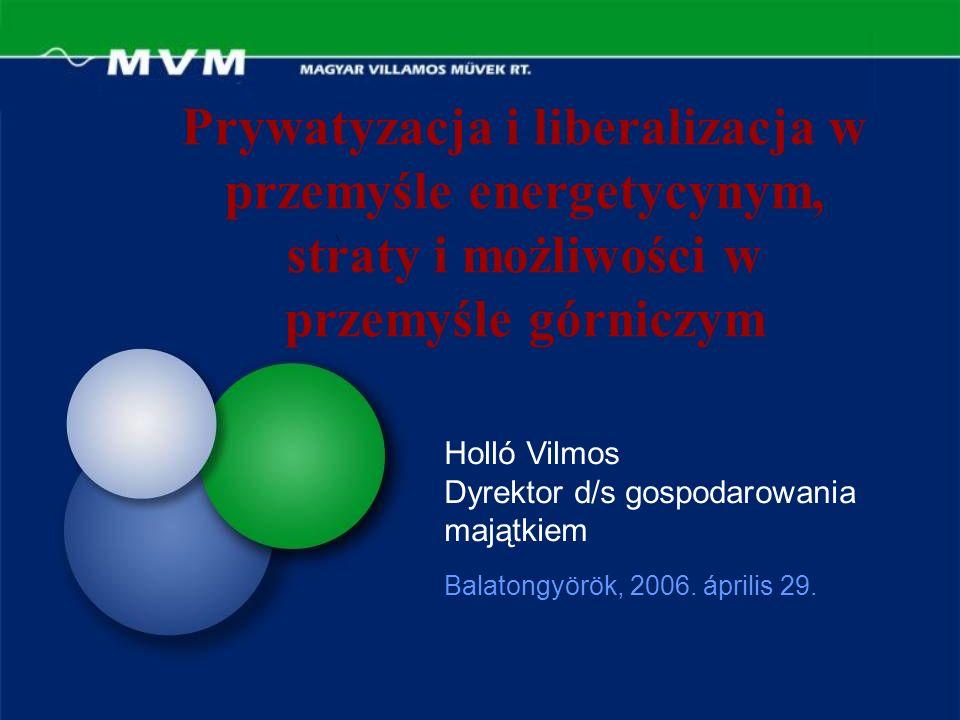 Prywatyzacja i liberalizacja w przemyśle energetycynym, straty i możliwości w przemyśle górniczym Balatongyörök, 2006.