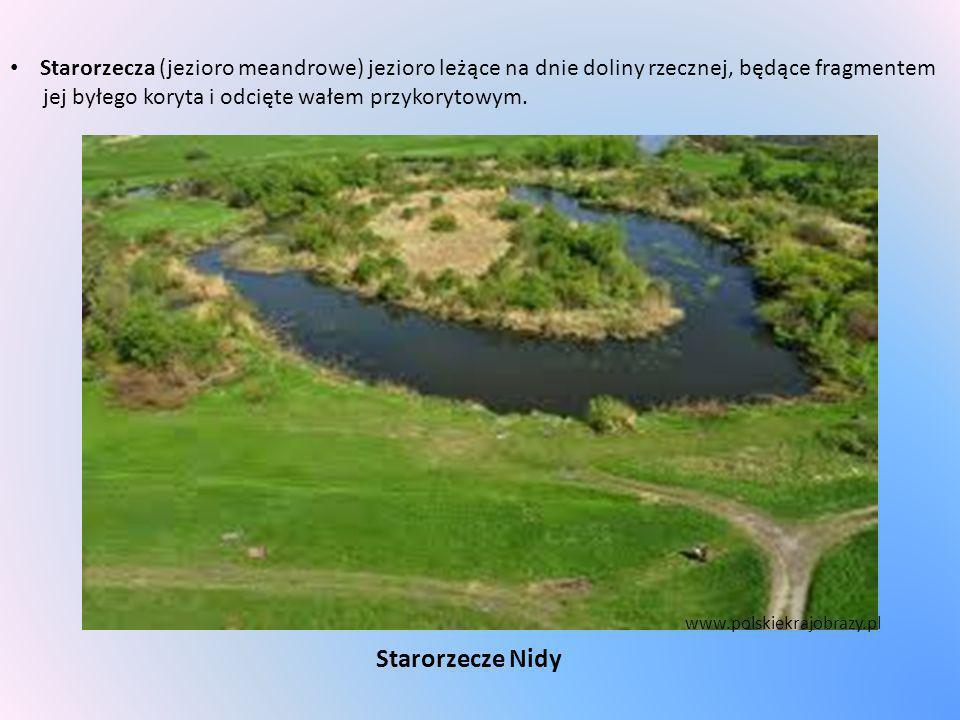 Starorzecza (jezioro meandrowe) jezioro leżące na dnie doliny rzecznej, będące fragmentem jej byłego koryta i odcięte wałem przykorytowym. Starorzecze