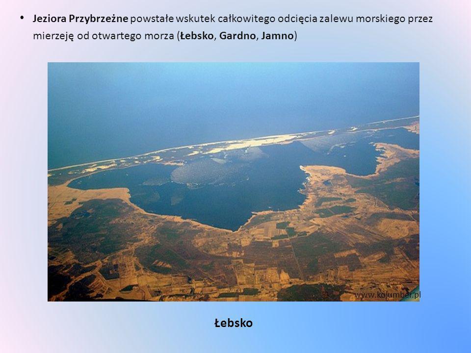 Jeziora Przybrzeżne powstałe wskutek całkowitego odcięcia zalewu morskiego przez mierzeję od otwartego morza (Łebsko, Gardno, Jamno) Łebsko www.kolumb