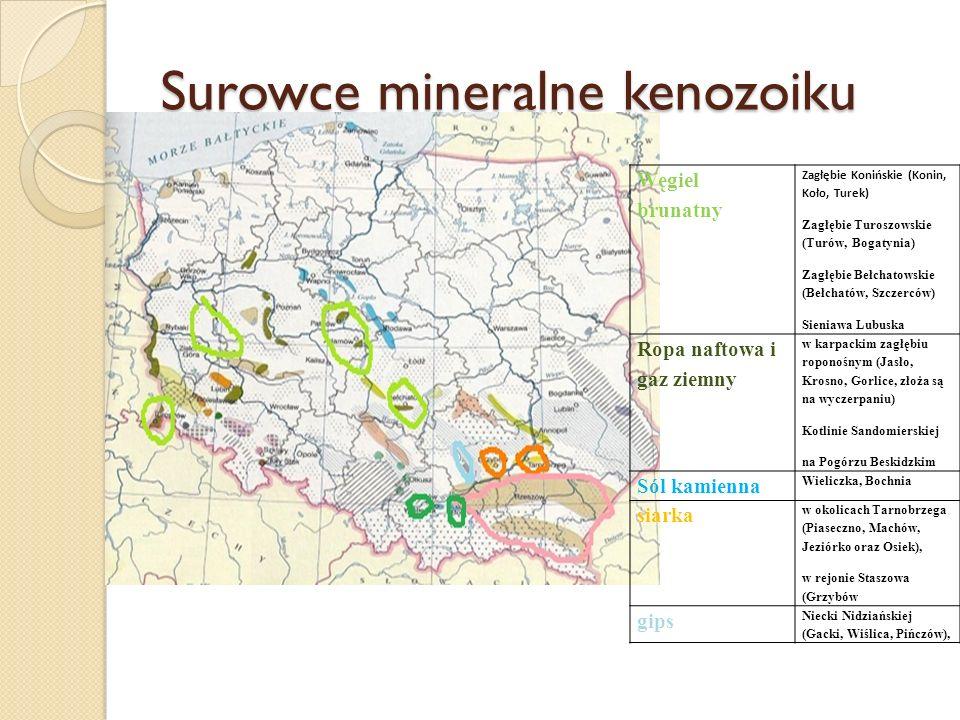 Surowce mineralne kenozoiku Węgiel brunatny Zagłębie Konińskie (Konin, Koło, Turek) Zagłębie Turoszowskie (Turów, Bogatynia) Zagłębie Bełchatowskie (B