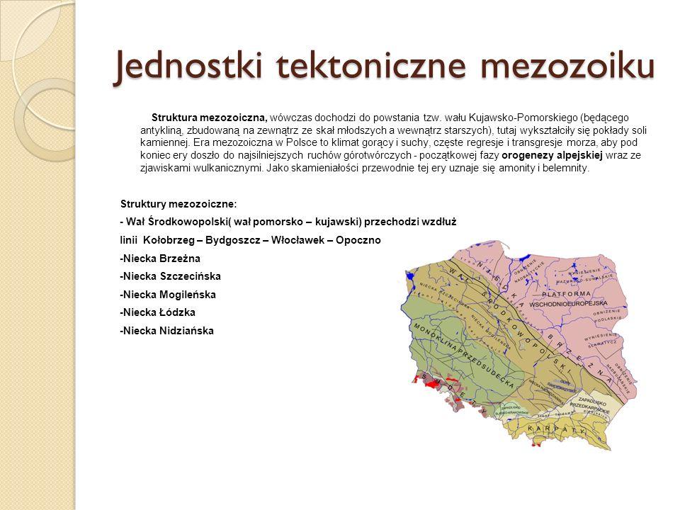 Jednostki tektoniczne mezozoiku Struktura mezozoiczna, wówczas dochodzi do powstania tzw. wału Kujawsko-Pomorskiego (będącego antykliną, zbudowaną na
