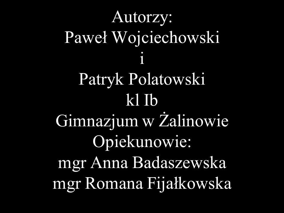Autorzy: Paweł Wojciechowski i Patryk Polatowski kl Ib Gimnazjum w Żalinowie Opiekunowie: mgr Anna Badaszewska mgr Romana Fijałkowska