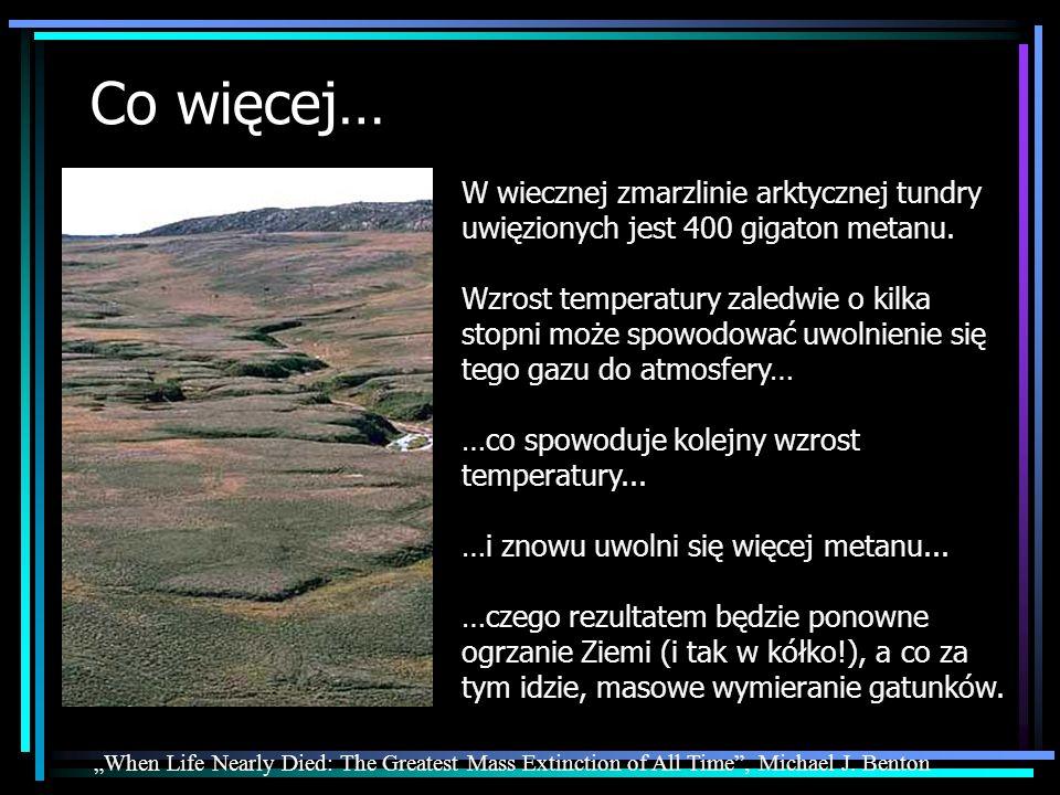 Co więcej… W wiecznej zmarzlinie arktycznej tundry uwięzionych jest 400 gigaton metanu. Wzrost temperatury zaledwie o kilka stopni może spowodować uwo
